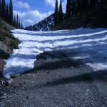 Gray Creek Pass June 25th 2014 001