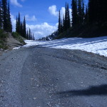 Gray Creek Pass June 25th 2014 002
