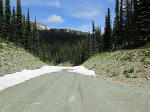 Gray Creek Pass Snow LIne June 28, 2013